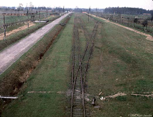 Birkenau Panorama of the Camp