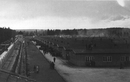 Photo 1945:  Taken by Lt. William Cowling at Dachau Liberation
