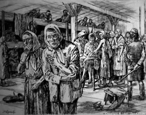 The Identification A Drawing By Jan Komski The