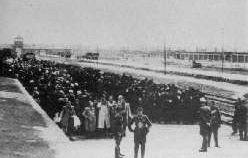 Separated into two lines at Auschwitz: men; women and children.