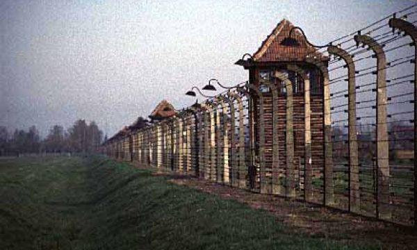 bir-fence01