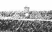 Birkenau Gate