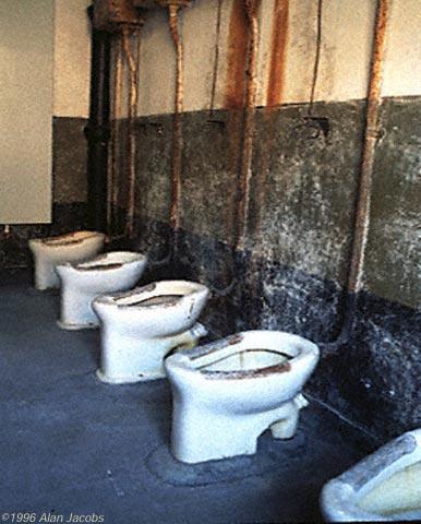 Birkenau Toilets