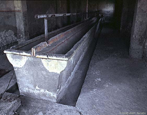 The Washroom at Birkenau (Auschwitz II)
