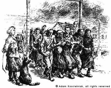 Birkenau Women's Gate