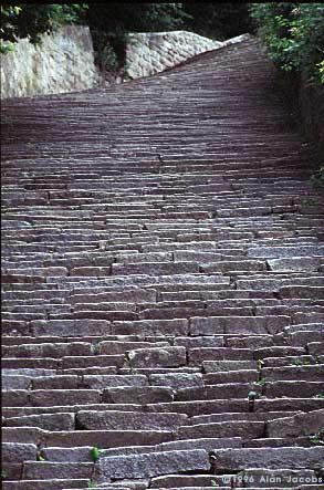 mau-stairs02